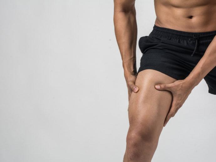 太ももの筋肉